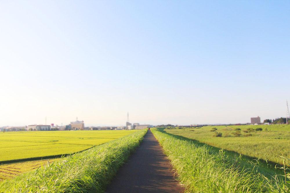 宮城県の風景の道
