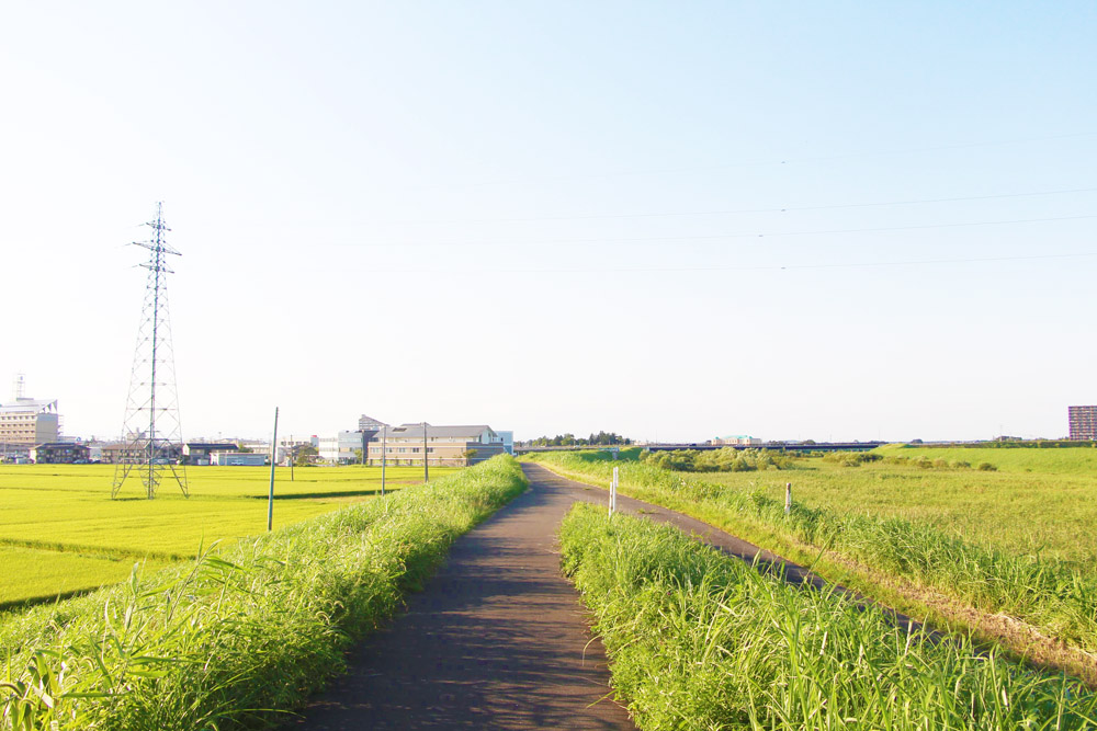 大崎市の風景