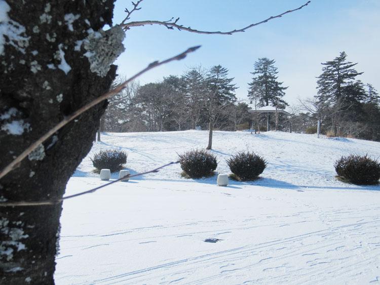 大崎市の公園