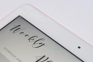 手書きをしたいので…新iPadとiPad proを試しに…